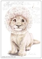 DandyLion by robfoote