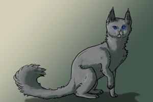 Bluestar in all her glory by cat-women2