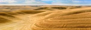 The Palouse by AlterEgoPhotography