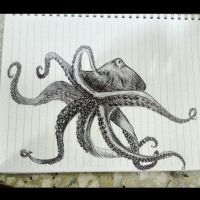 octopus by HanaYean