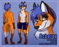 Acheron the fox by Warwind