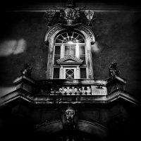 Window BW by LesEssences