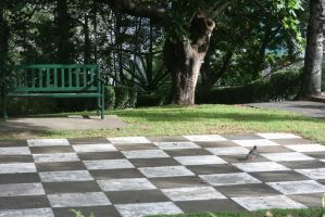 Giant Chessboard Revisited by Mind-Matter