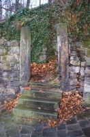 Old stone steps by annawsw