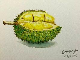 Durian by WB940618