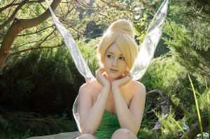 Tinkerbell VII by JokerLolibel