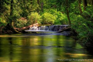 Waterfall - Middle Whatcom Falls by La-Vita-a-Bella