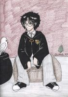 Harry Potter: Platform by AngelicDragonElf