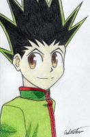 Gon by White-Dream-Drop