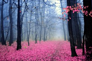 pinky forest by passionNdesire