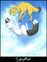 skydive by catfinches