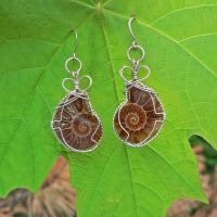 Silver Ammonite Earrings by magpie-poet