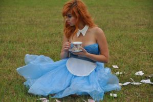 Alice in Wonderland12 by polocola