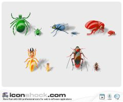 Insects by Iconshock