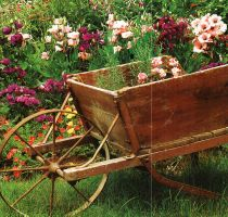 Country Garden Wagon by AngelaHolmesStock