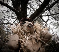 """""""Scarecrow"""" photoshoot - 7 by JilliD"""