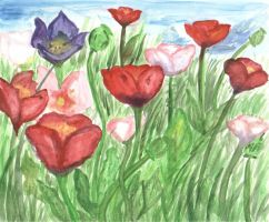 Opium Grows in Grass by Caylyngasm
