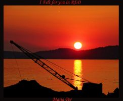 I felt for you in RED by mariaper