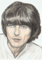 George Harrison without cat ears by gagambo