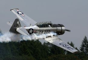 T-6 Texan Flyby by shelbs2