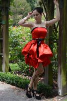 Red Satin 12 by Anariel-Stock