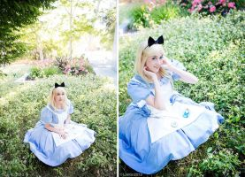 Alice in Wonderland by Flying-Fox