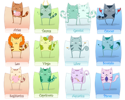 Zodiac cats by VivianBy