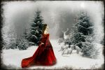 Winters Tale by ctacd