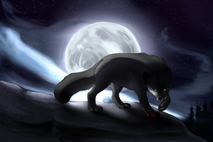 Full moon by Lusa-Lusa