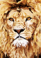 Lion Closeup by elviraNL