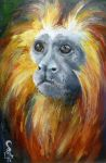 Golden Lion Tamarin by OneCrazyCleric
