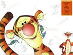 Tigger DX by boxxi