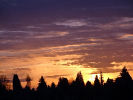 Silhouetted Sunrise by Mucka33