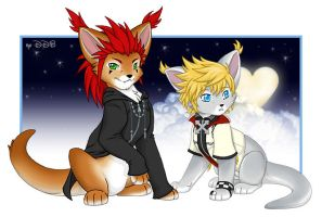 Axel and Roxas Caits by deeed