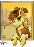 Pony Of The West by CloudDG