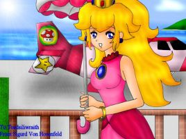 Princess Peach w her Airplane by SigurdHosenfeld