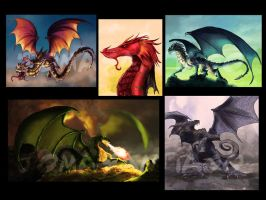 Various dragons by joma33