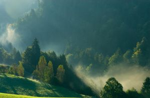 Fog in the morning 2 by MarcZingg