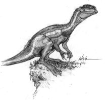 Dilophosaurus sketch by Ashere