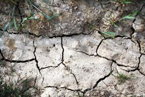 Cracked Earth_Groundscape by FairyAndTurtleStock
