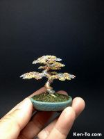 3 color wire bonsai tree sculpture by Ken To by KenToArt