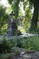 old cemetery by Su58