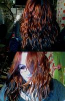 L'oreal Studio Curly Hair by KatieAlves