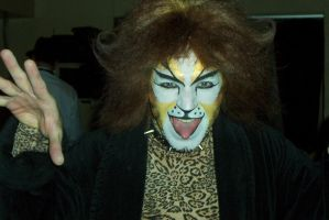 The Rum Tum Tugger Photo by Moundfreek