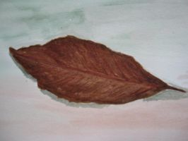 leaf... by riya0326