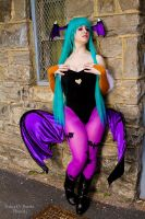 Morrigan 10 by Lily-in-Leather