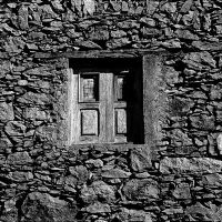 the window by augenweide