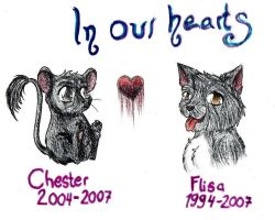 R.I.P Chester And Flisa by KattFloka
