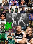 D Generation X (Shawn Michaels Triple H) Collage by WWE-Undertaker