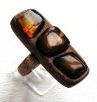 Ring 2 - Amber and Wood by AmberSculpture